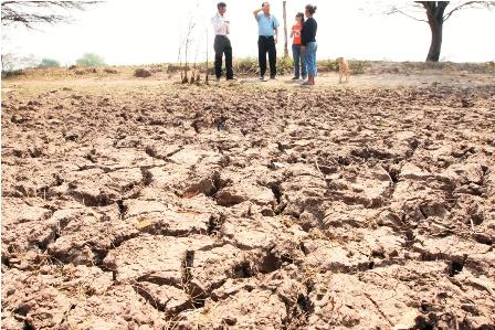 Los-municipios-presentaran-un-seguro-agricola-