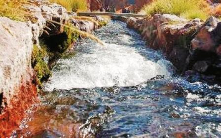 Aguas-del-Silala-para-produccion-Piscicola