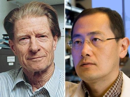 Un-japones-y-un-ingles-ganan-el-Nobel-de-Medicina-