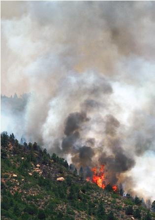 Incendio-avanza-sin-control-en-Colorado