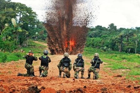 Policia-destruye-91-fabricas-de-cocaina-en-San-German