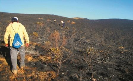 Las-sequias-e-incendios--preocupan-a-Santa-Cruz-