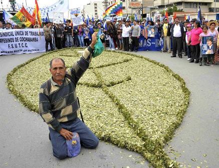 ONU-dice-que-excepcion-boliviana-sobre-hoja-de-coca-no-supone-su-legalizacion