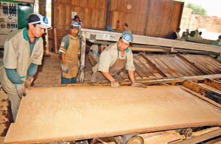 50%-de-aserraderos-cierra--en-Guarayos-y-Chiquitania