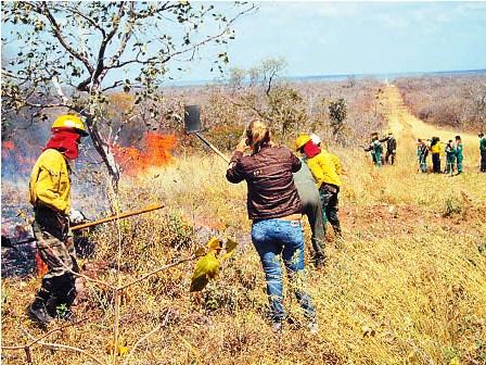 Tres-incendios-ponen-en-riesgo-a-la-chiquitania