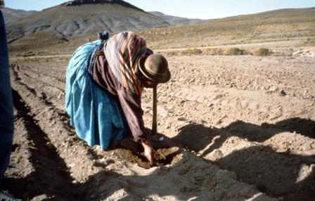 Amplian-plazo-para-acogerse-al-seguro-agricola