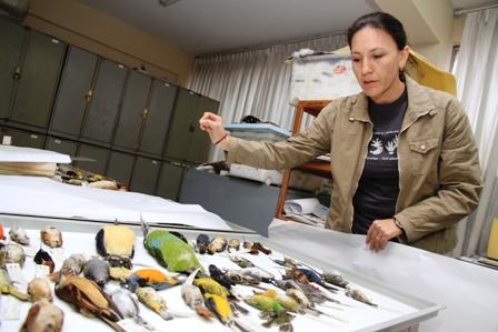Pocos-recursos-limitan-estudio-de-nuevas-especies