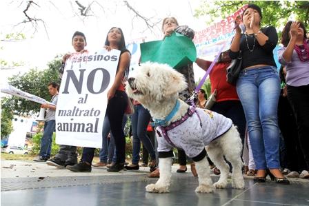 Activistas-y-Alcaldia-acuerdan-agilizar-centro