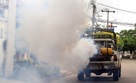 Salud-confirma-que-se-registraron-150-casos-de-dengue-en-zonas-endemicas-del-pais
