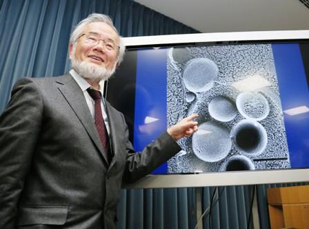 Biologo-japones-gana-el-Nobel--de-Medicina-