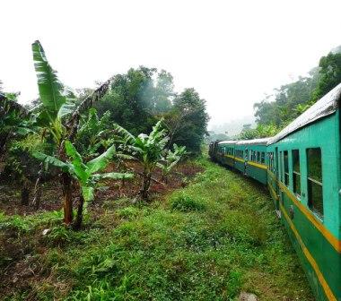 Ferrovia-Montero-Bulo-Bulo-con-mas-de-un-ano-de-retraso