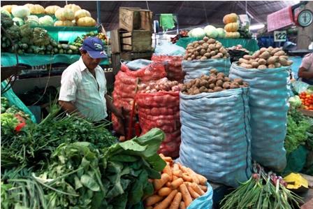 Bolivia-importo-91.372-tn-en-cinco-tipos-de-alimentos-