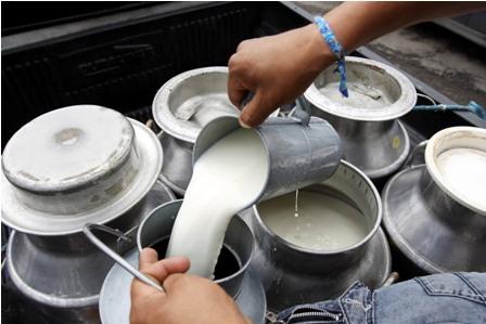Exigen-leche-nacional-en-desayuno-escolar