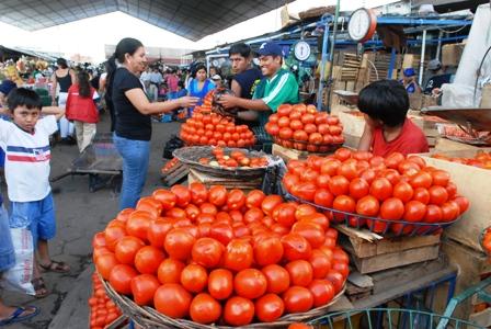 Ingreso-de-tomate-peruano-pone-en-alerta-a-productores
