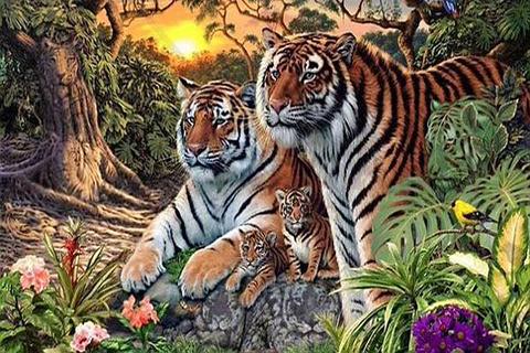 Encuentra-a-los-16-tigres--escondidos--en-esta-imagen