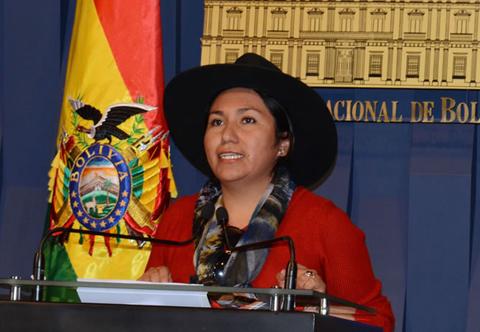 El-gobierno-boliviano-crea-la-Direccion-General-de-Redes-Sociales
