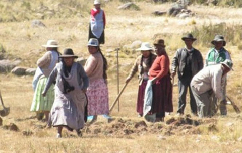 Un-alcalde-del-Peru-habla-de--invasion--de-bolivianos-a-su-territorio