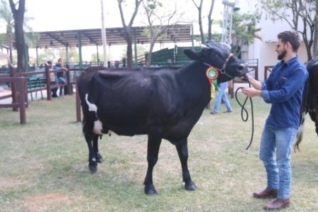 Rompen-record-en-produccion-de-leche