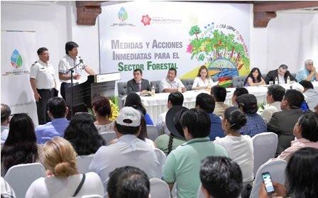 Lanzan-paquete-de-normas-a-favor-del-sector-forestal-