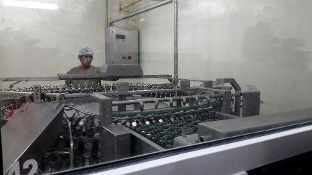 Inauguran-planta-industrial-de-huevo