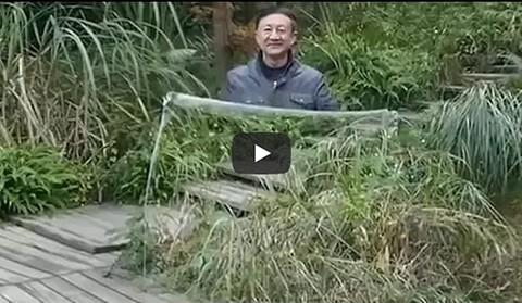 VIDEO:--Capa-de-invisibilidad--es-furor-en-las-redes-sociales