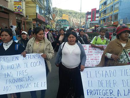 Cocaleras-piden-que-liberen-a-los-arrestados