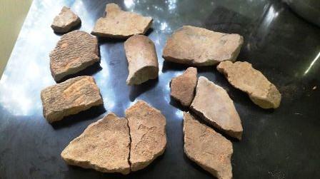 Hay-indicios-de-urna-funeraria:-El-Palmar