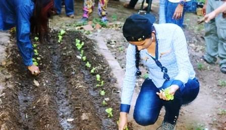 Crece-la-cultura-de-huertos-urbanos-en-todo-Bolivia