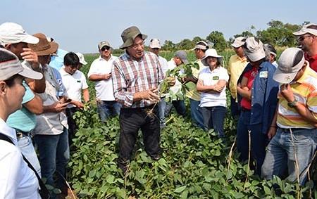 Bayer-capacita-a-productores-sobre-el-manejo-de-soya