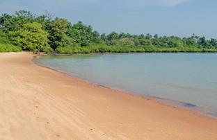 Estas-islas-pueden-ayudar-a-detener-las-enfermedades-mas-mortales-del-mundo