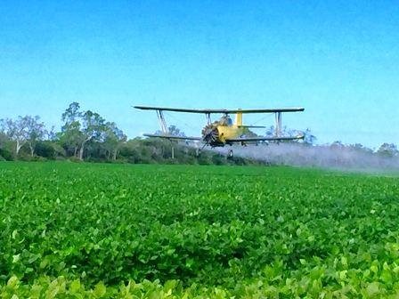 Productores-preocupados-por-la-fumigacion-aerea