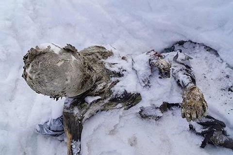 Recuperan-cadaveres-de-alpinistas-momificados-despues-de-59-anos-