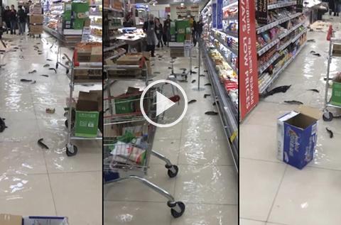 Vea-como-un-supermercado-se-convierte-en-acuario-tras-explosion-de-pecera
