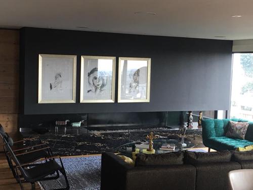 Carlos-Vives-tiene-en-su-casa-obras-de-Roxana-Hartmann
