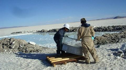 Bolivia-debe-pagar-$us-48,6-millones-a-una-empresa-chilena