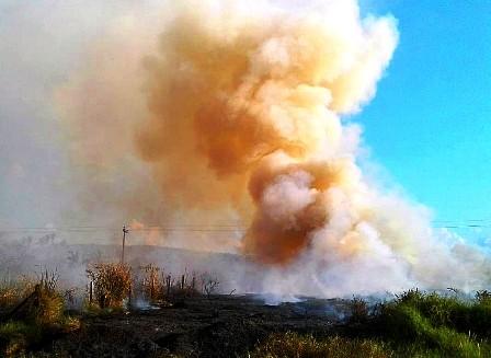 Guarayos,-se-quemaron-mas-de-400-hectareas