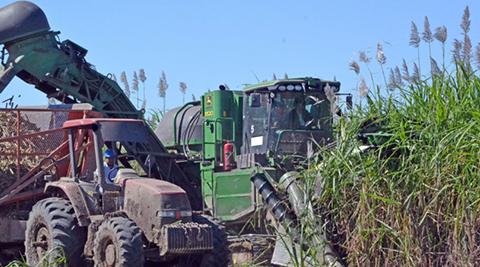 Ante-el-segundo-aguinaldo--casi-garantizado-,-los-agroindustriales-temen-no-poder-cumplir