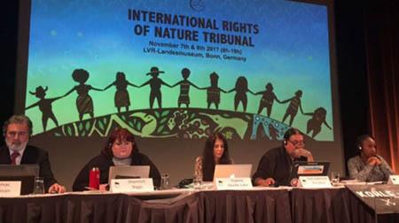 Indigenas-pediran-que-tribunal-internacional-falle-que-Bolivia-vulnero-derechos-en-el-TIPNIS