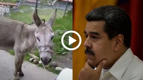 Dos-bomberos-podrian-ser-condenados-a-20-anos-de-prision-por-burlarse-de-Maduro