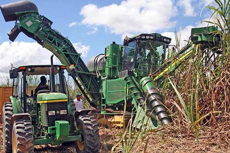-Ley-del-etanol-garantiza-inversiones-de-caneros-e-industriales-insertos-en-combustibles-verdes