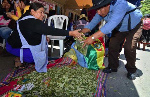 Bolivia-celebra-el-Dia-Nacional-del-Acullico