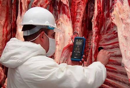 Exportacion,-Honduras-requiere-carne-boliviana