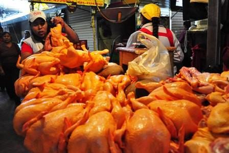 Descartan-sobreproduccion-de-pollos-desde-el-Senasag-