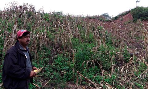 Productores-afectados-por-las-lluvias-seran-indemnizados-con-Bs-3-millones
