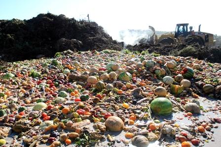 El-14%-de-los-alimentos-del-mundo-se-desperdician-antes-de-llegar-a-la-mesa-de-los-comensales