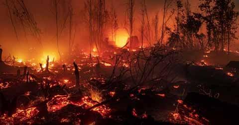 Incendios-forestales-consumen-mas-de-850-mil-hectareas-en-Indonesia