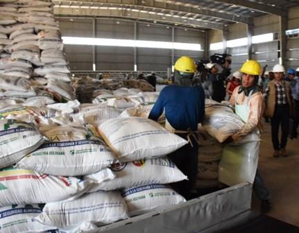 San-Buenaventura-produce-302-mil-quintales-de-azucar