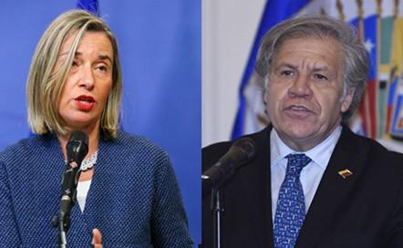 Union-Europea-y-OEA-exigen-nuevas-elecciones-sin-demoras-en-Bolivia-