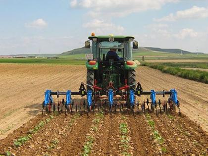 CEDLA:-Crecimiento-del-PIB-en-el-sector-agropecuario-no-se-refleja-en-la-seguridad-alimentaria