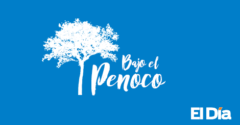 No-pudo-ser-Pinochet,-Pinocho,-si